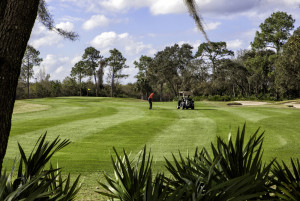 Orlando golf homes for sale at Championsgate